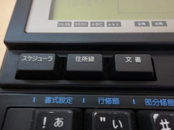 DSC00910.JPG
