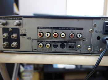 DSC08393.JPG