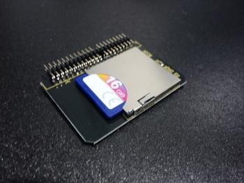 DSC09494.JPG